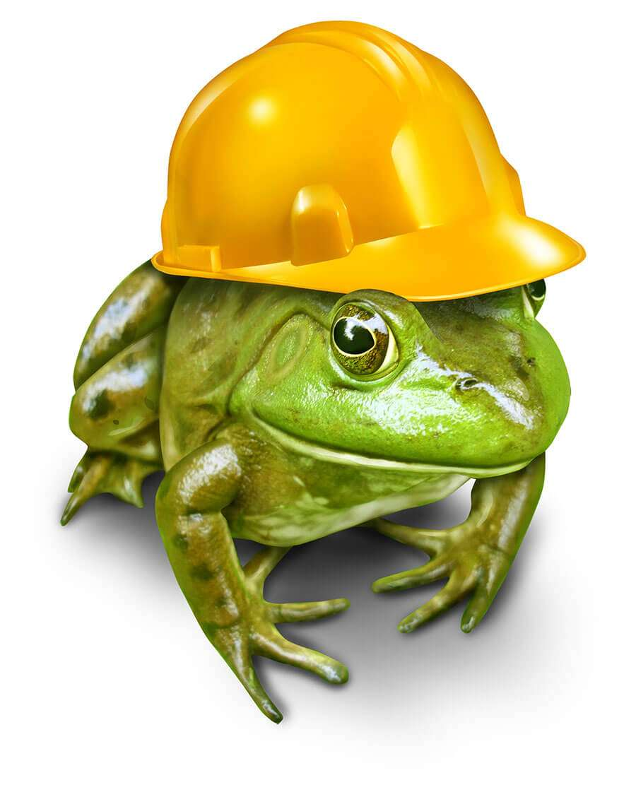 construction_waste_disposal_construction_waste_removal_industrial_skip_hire_builders_bin_get_a_skip_frog_with_helmet